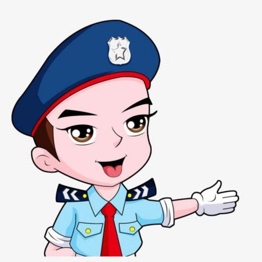 中宸特卫国际保安服务(北京)有限公司